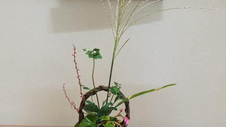 〝花は野にあるように〟✨ 魂と心のお茶室 in 姫路
